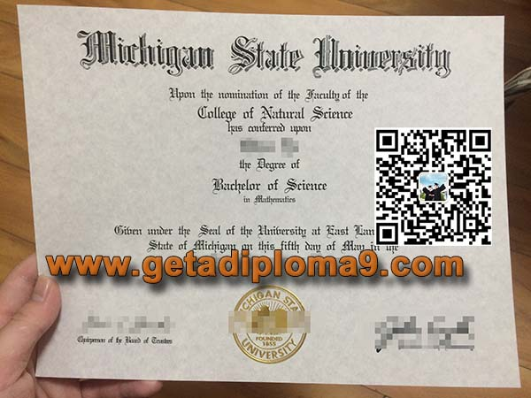 Michigan State University degree sample